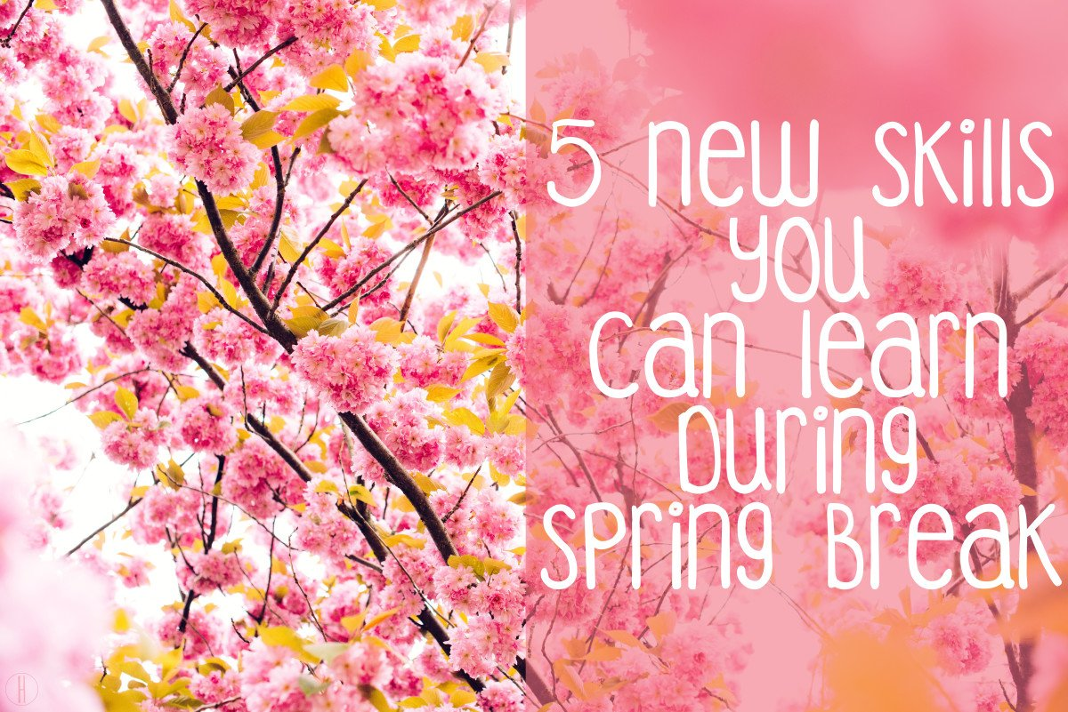 5 New Skills You Can Learn During Spring Break