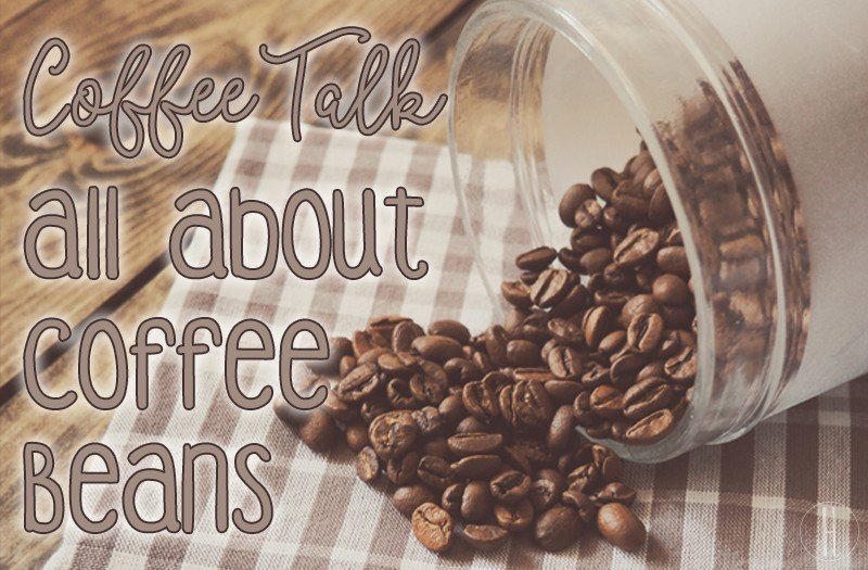 Coffee Talk: All About Coffee Beans | Hayle Olson | www.hayleolson.com